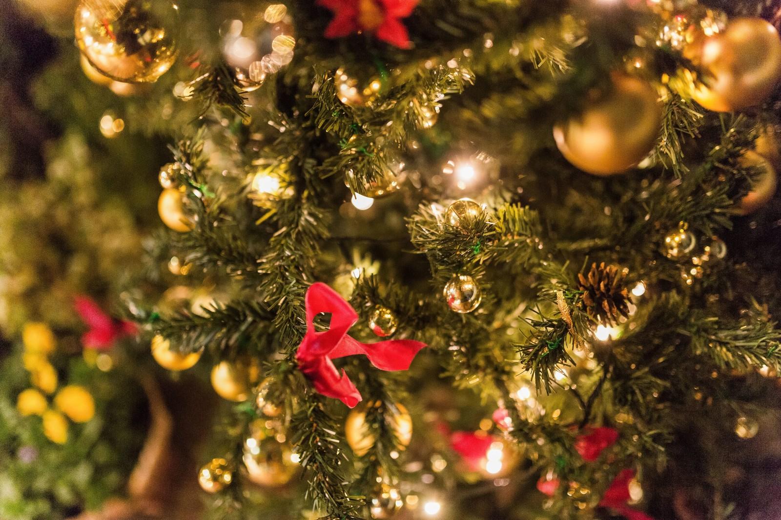 209日目!ちかまの恋愛ダイエットブログ〜横浜・みなとみらいクリスマス編①移動手段編〜
